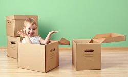 Reliable Packing Service in SW12